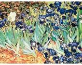 Bild Iris Garden - Kunstdruck auf Holzfaserplatte - 59 x 79 cm, Artland